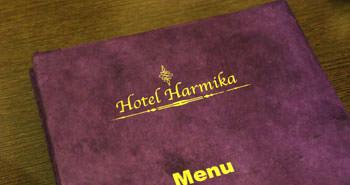 Harmika Experience
